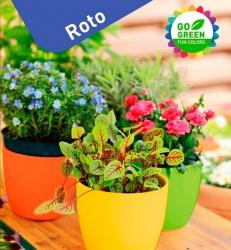 Roto-fun-color