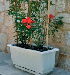 Ionian-jardinieres